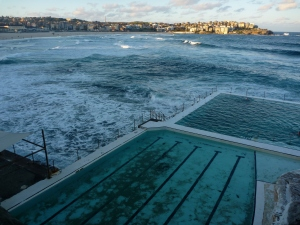 Baby swimming lessons at Bondi Icebergs