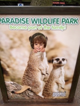 Day trippers #1: ParadisePark